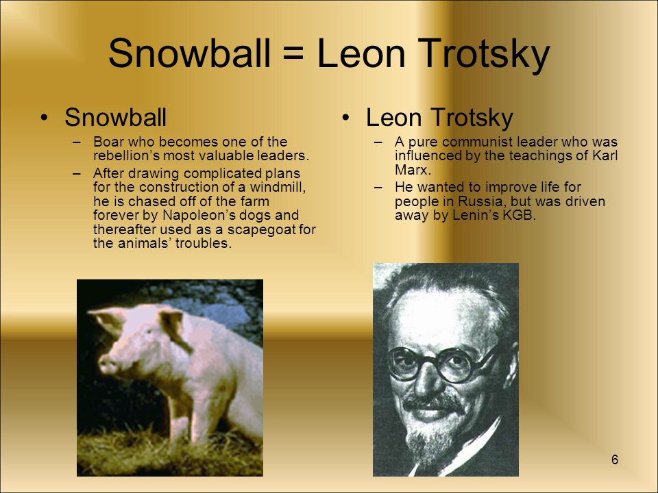 snowball and trotsky Snowball is the allegory of trotsky in animal farm his name was from his skin colour as you can see on this picture, he had white skin after the animals were able to defeat farmer jones, he spread the idea of animalism and was an idealist just like his real life counterpart, trotsky.