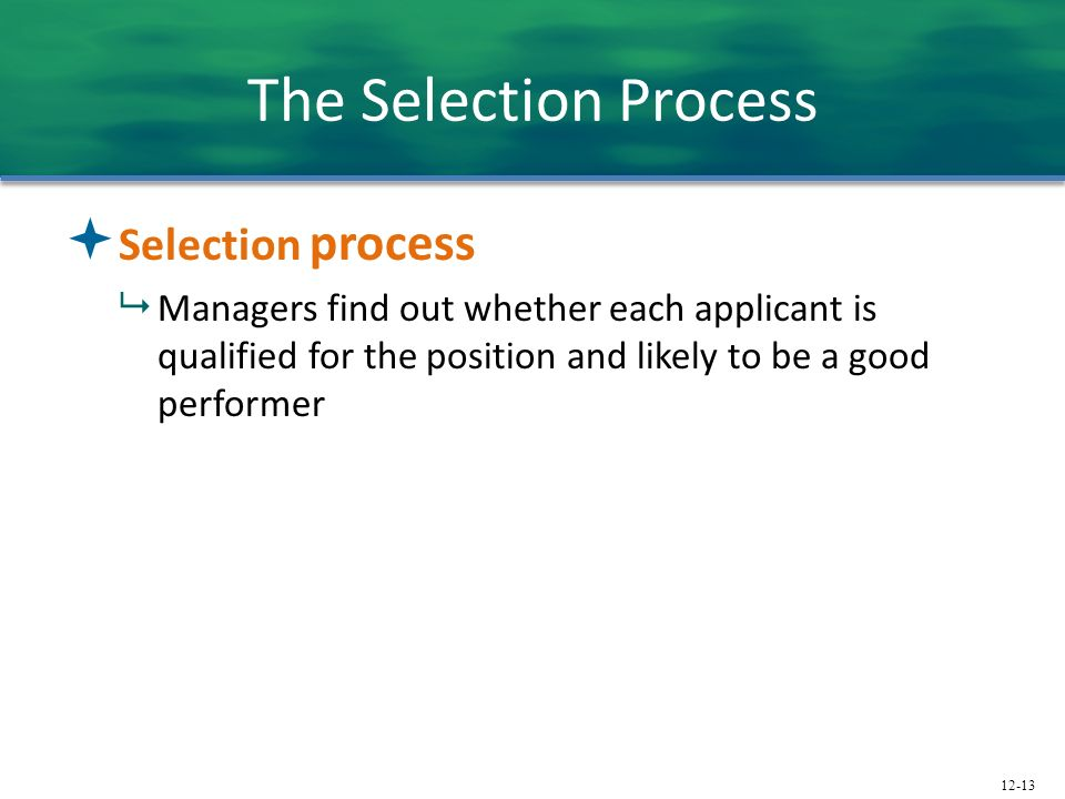 The Selection Process Selection process