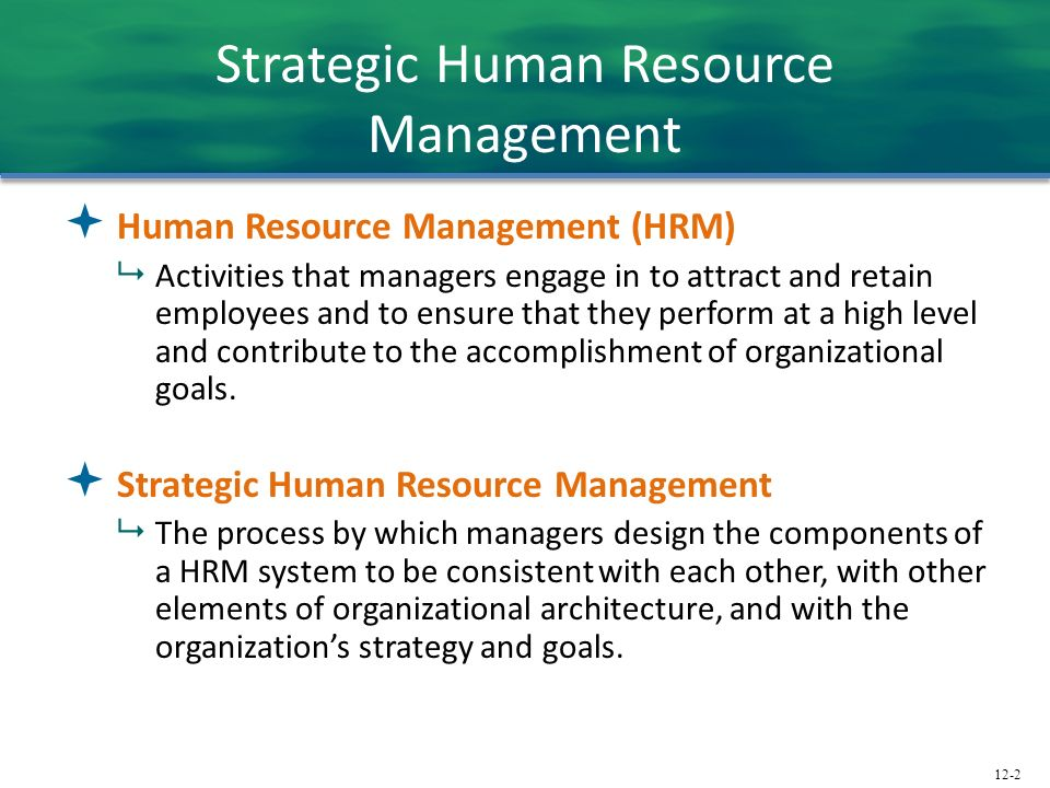 key components of human resource management Excellent hr tools and great presentation about hr management, hr strategy and career management, human resource management, there are three fundamental component areas of human resource development (hrd): individual development (personal), career development (professional), and organizational development.