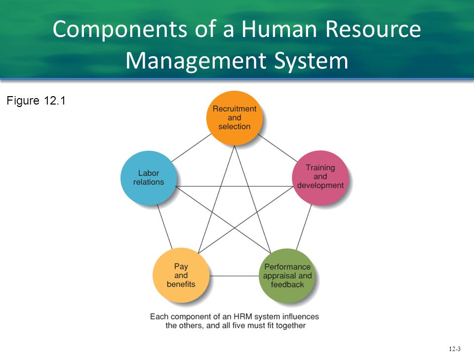human resource recruitment and information system Munich personal repec archive the role of information systems in (e-human resource management), hris (human resource information systems) and hrms (human resource management systems) we must be aware that there is a administrative procedures in the processes of recruitment.