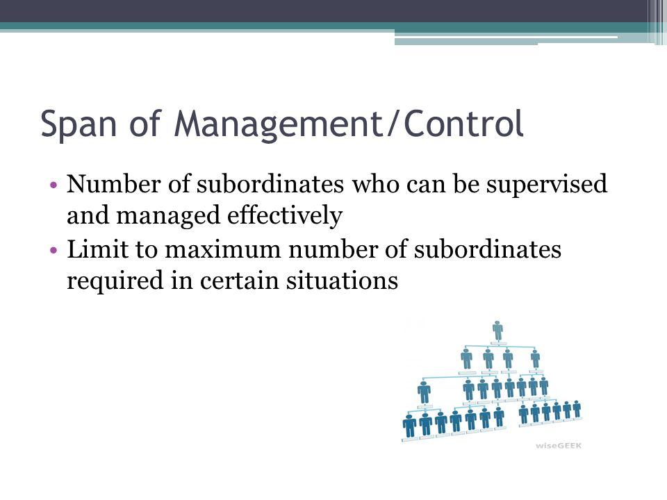 Span of Management/Control