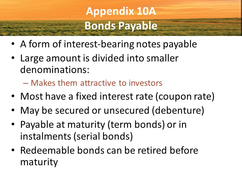 Appendix 10A Bonds Payable  Note Payable Form