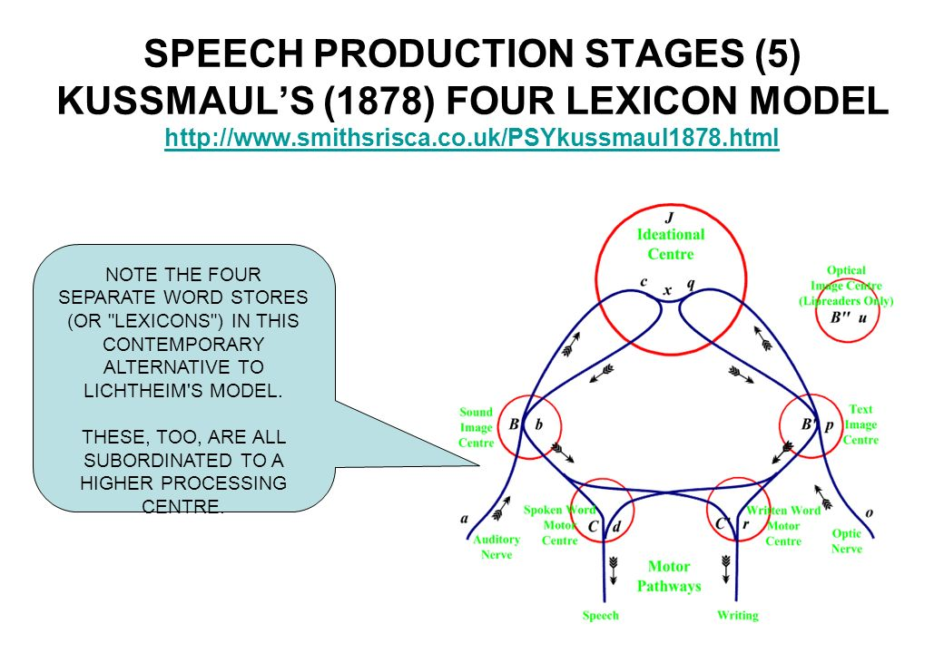 what are the stages of language production Language production is the production of spoken or written language it describes all of the stages between having a concept,.