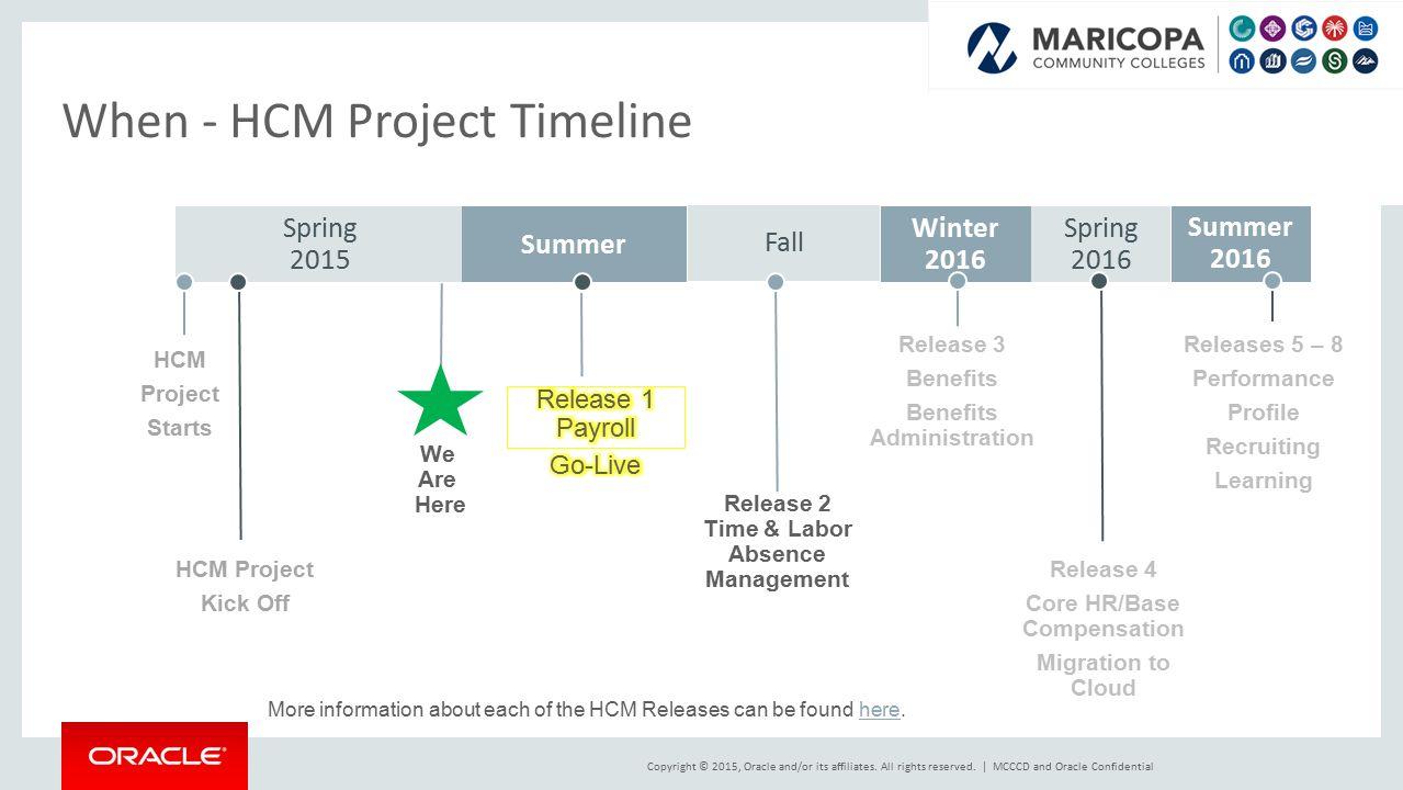 Hcm Stabilization And Modernization Project Ppt Video