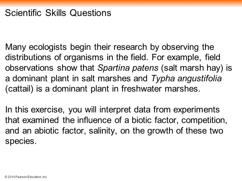 Scientific Skills Questions