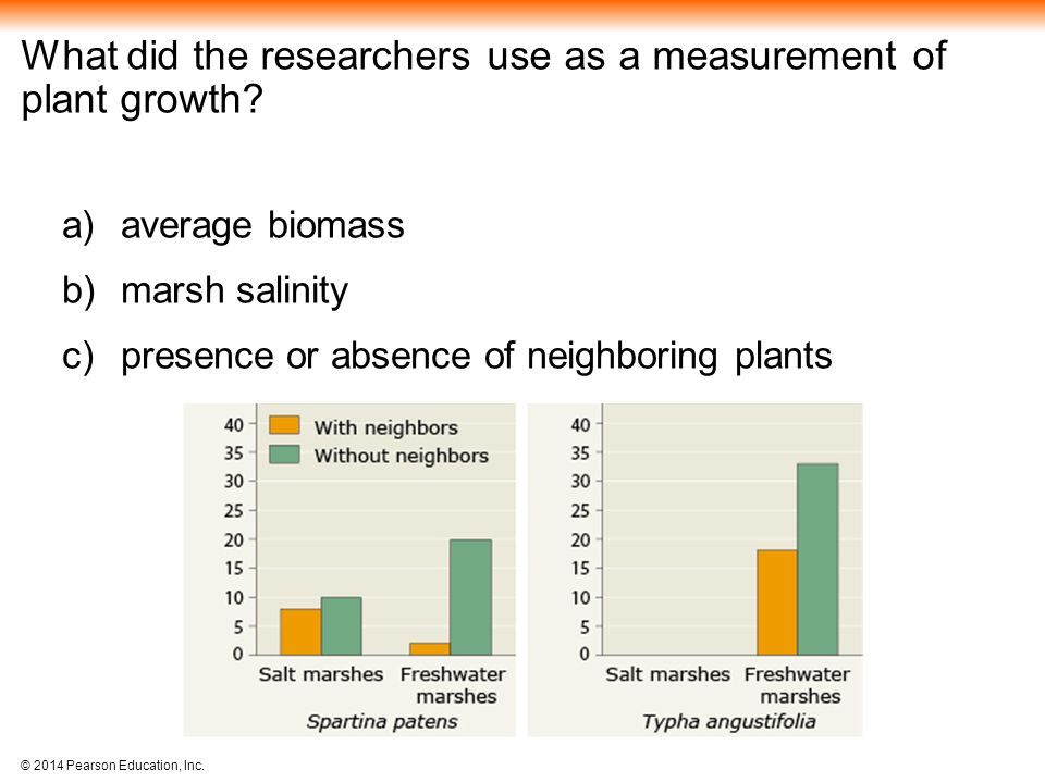 What did the researchers use as a measurement of plant growth