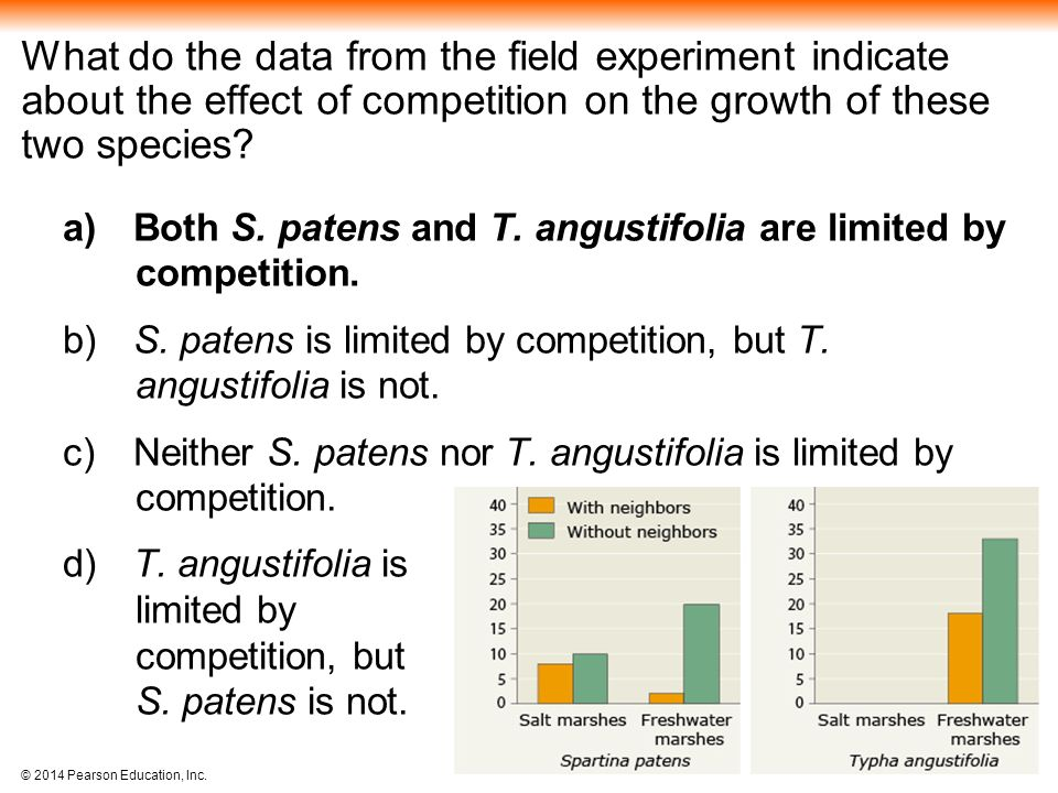 What do the data from the field experiment indicate about the effect of competition on the growth of these two species