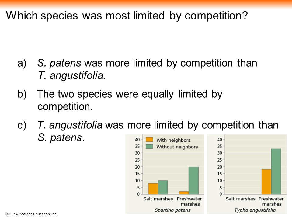 Which species was most limited by competition