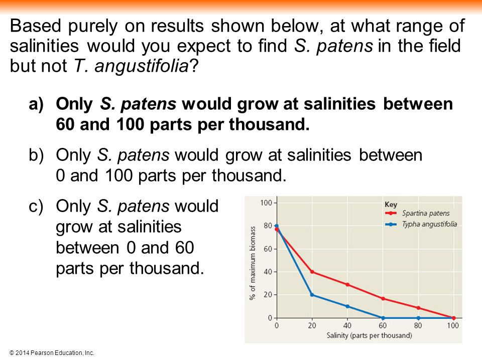 Based purely on results shown below, at what range of salinities would you expect to find S. patens in the field but not T. angustifolia