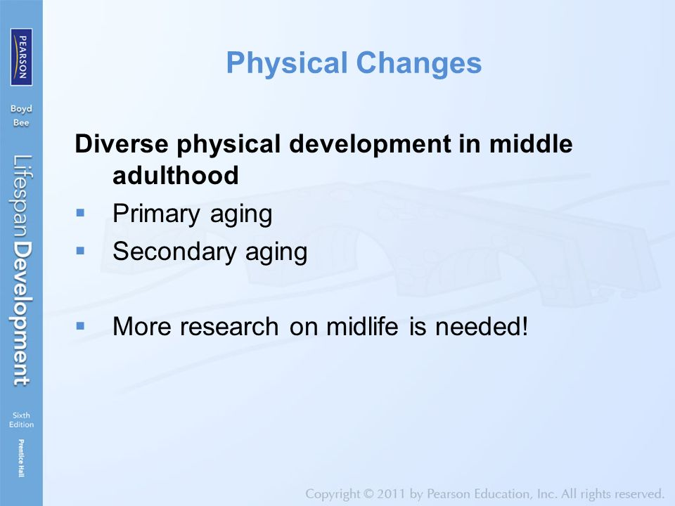 Physical Development Of Adults 54