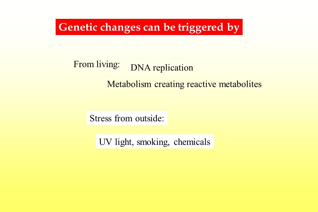 Genetic changes can be triggered by