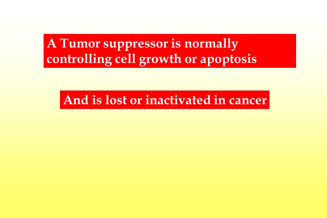 A Tumor suppressor is normally controlling cell growth or apoptosis