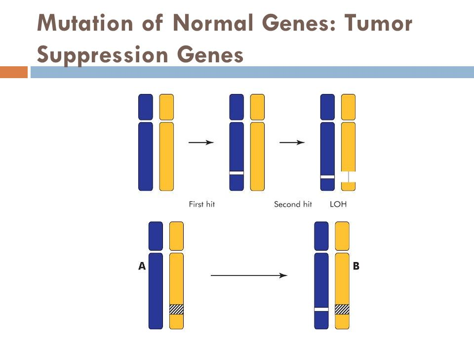 mutation of genes No two people are alike, due to the subtly different ways our genomes are expressed but sometimes these biological differences lead to genetic mutations that are.