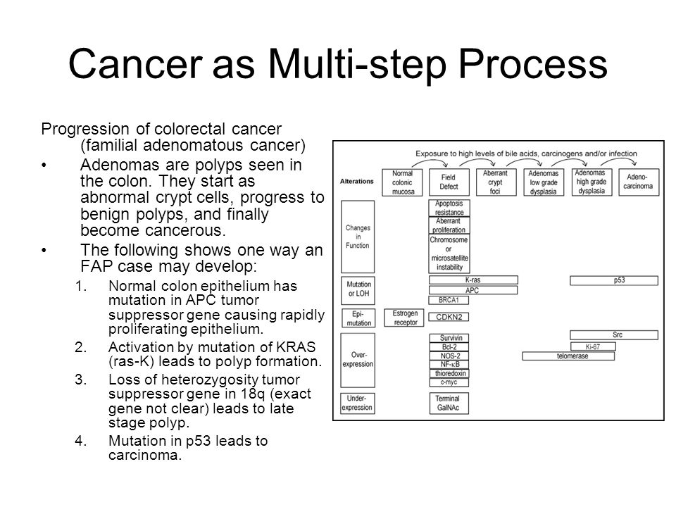 Cancer as Multi-step Process