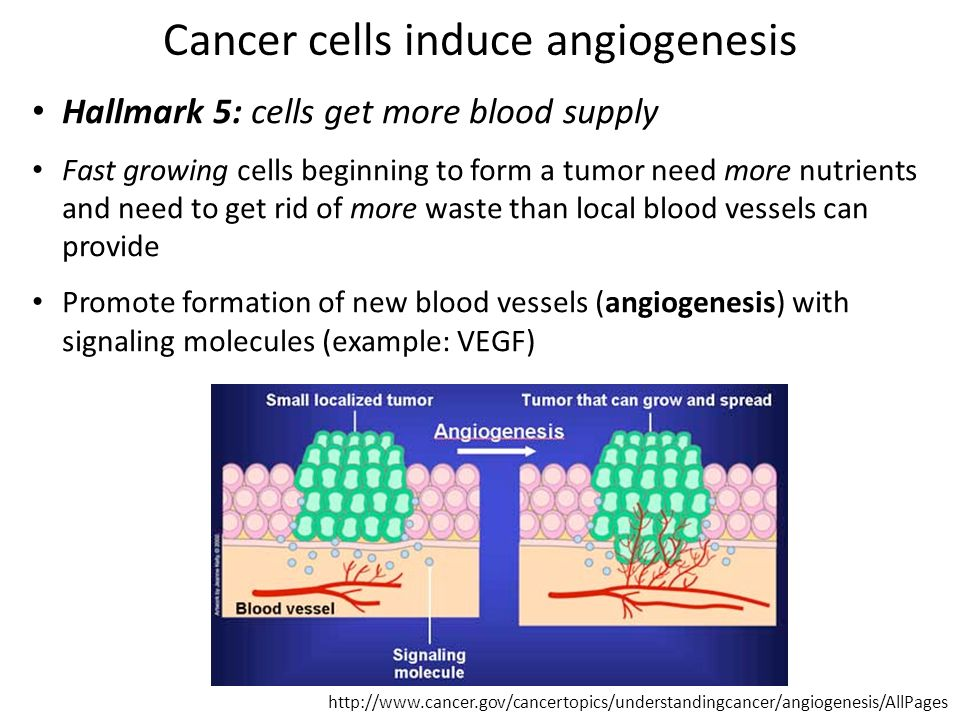 Cancer: when our own cells become the enemy - ppt video online ...