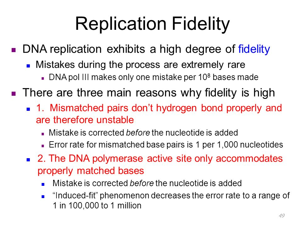 errors in dna replication essay This is the mutation rate observed in the absence of environmental mutagens  and is caused by errors during dna replication spontaneous tautomeric shifts.