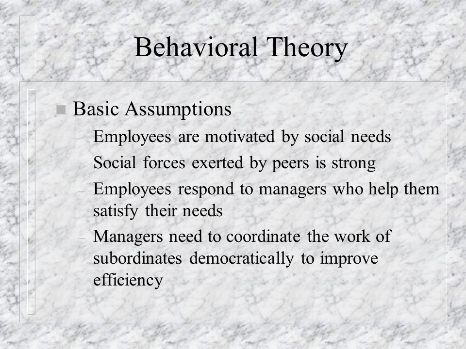 Behavioral Theory Basic Assumptions