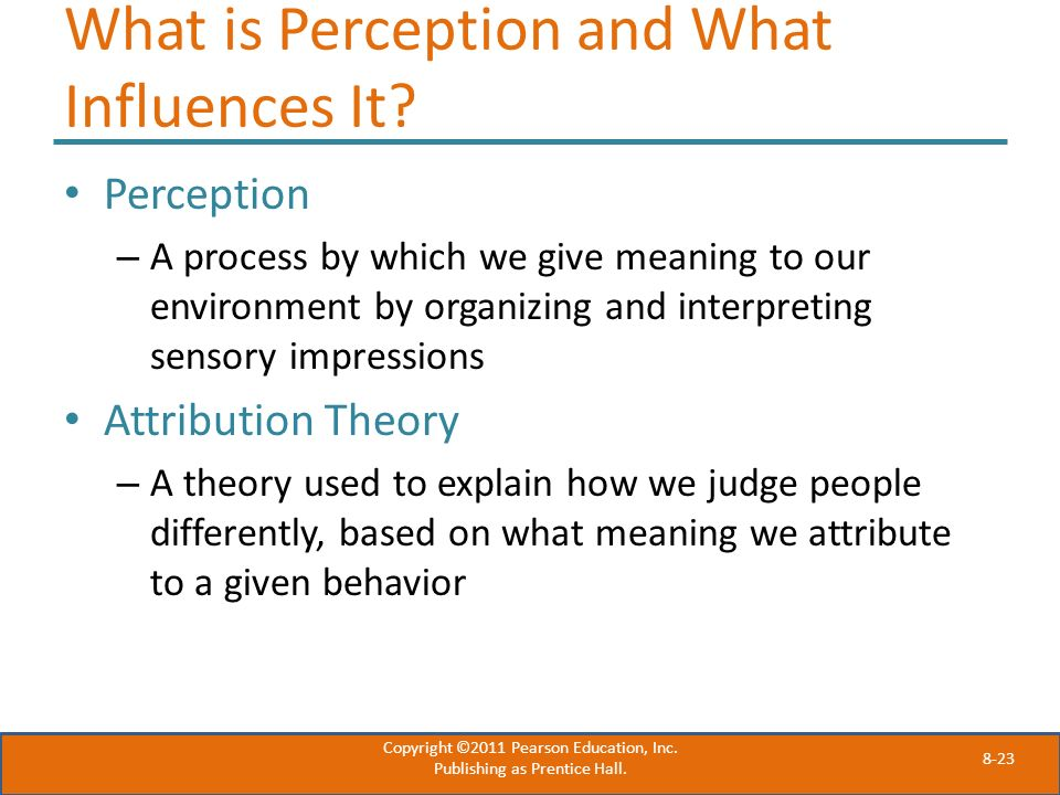 What is Perception and What Influences It