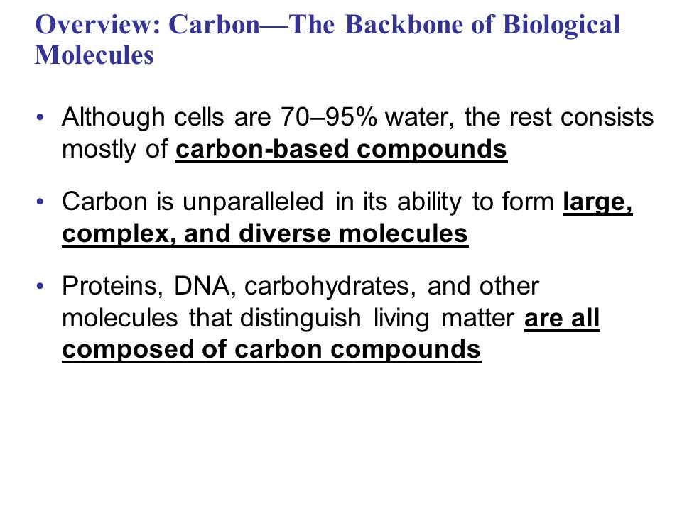 an overview of carbon