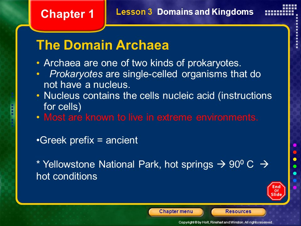 The Domain Archaea Chapter 1