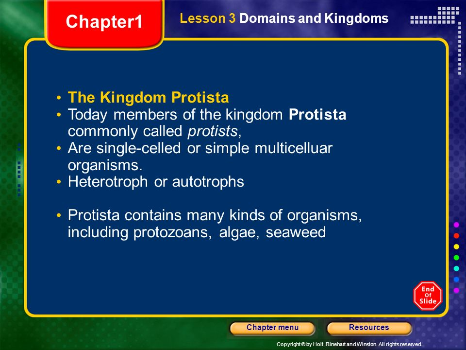 Chapter1 The Kingdom Protista