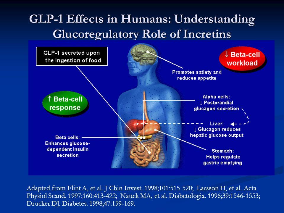 GLP-1 Effects in Humans: Understanding Glucoregulatory Role of Incretins