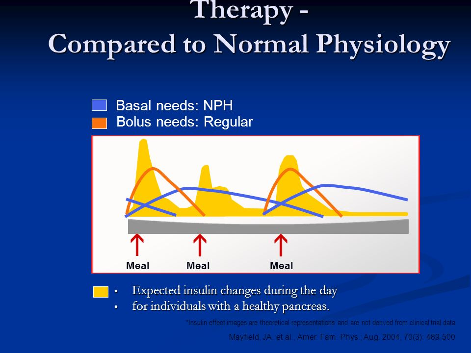 BID NPH and Regular Insulin Therapy - Compared to Normal Physiology