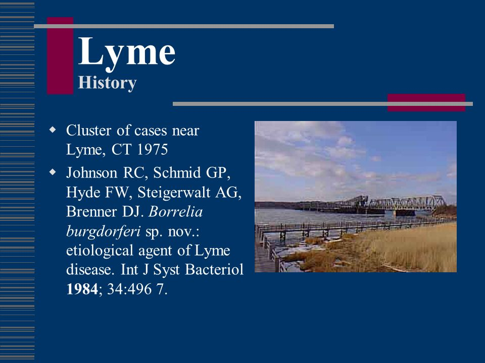 Lyme History Cluster of cases near Lyme, CT 1975