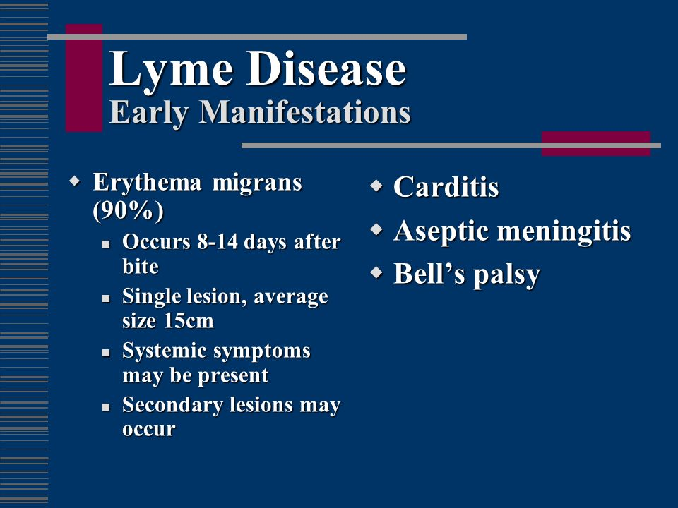 Lyme Disease Early Manifestations