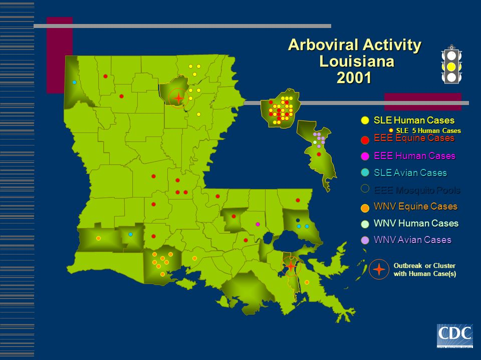 Arboviral Activity Louisiana 2001