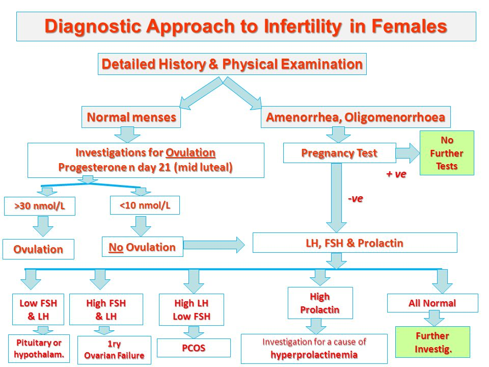 Biochemical Aspects of Male & Female Subfertility ...