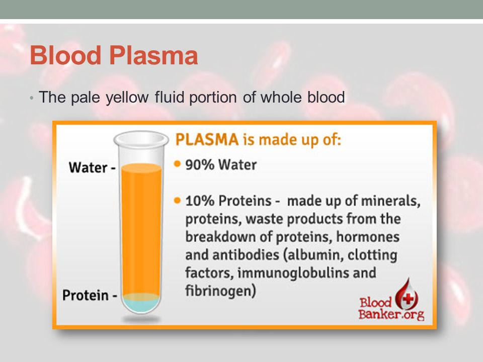 Blood Plasma The pale yellow fluid portion of whole blood
