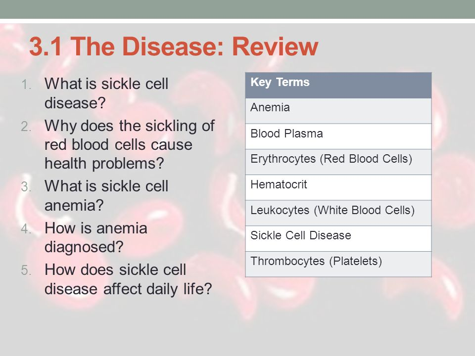 3.1 The Disease: Review What is sickle cell disease