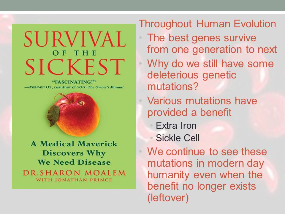 Throughout Human Evolution