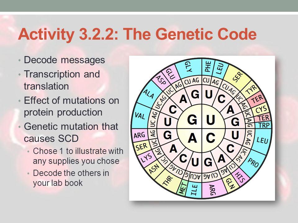 Activity 3.2.2: The Genetic Code