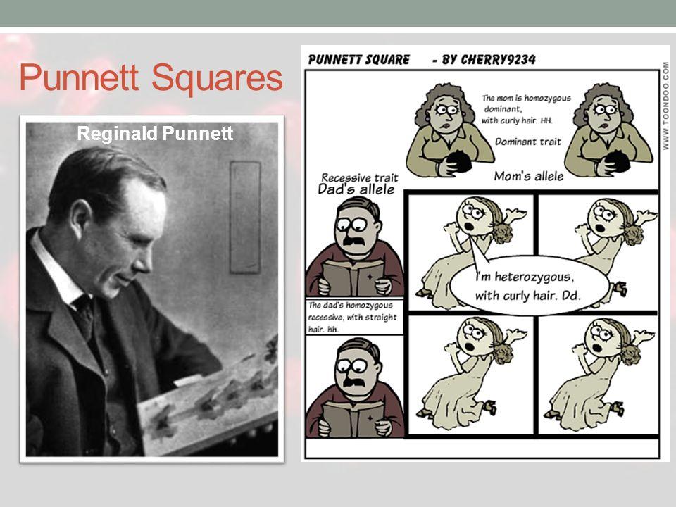 Punnett Squares Reginald Punnett