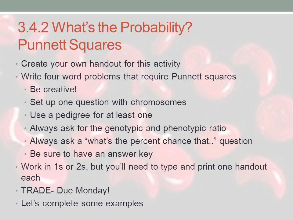 3.4.2 What's the Probability Punnett Squares