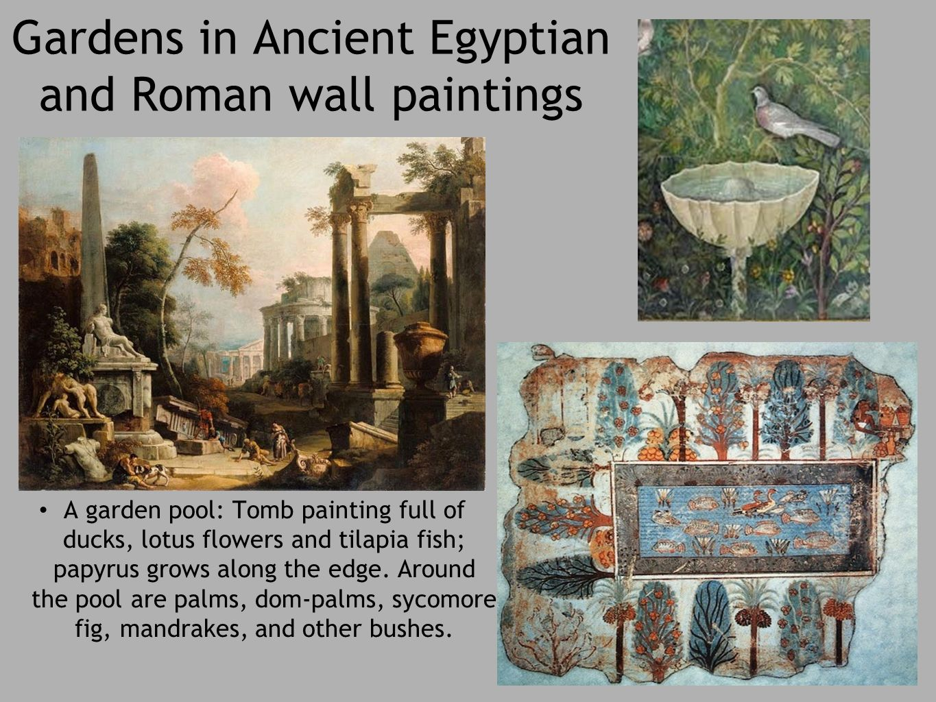 gardening ancient egypt and gardens