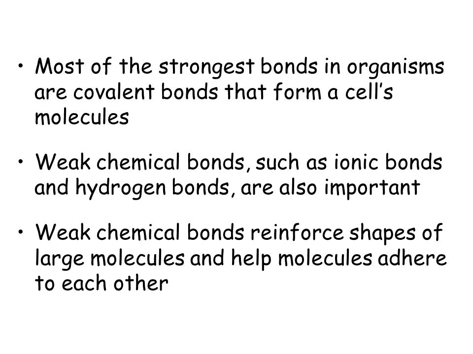 Most of the strongest bonds in organisms are covalent bonds that form a cell's molecules