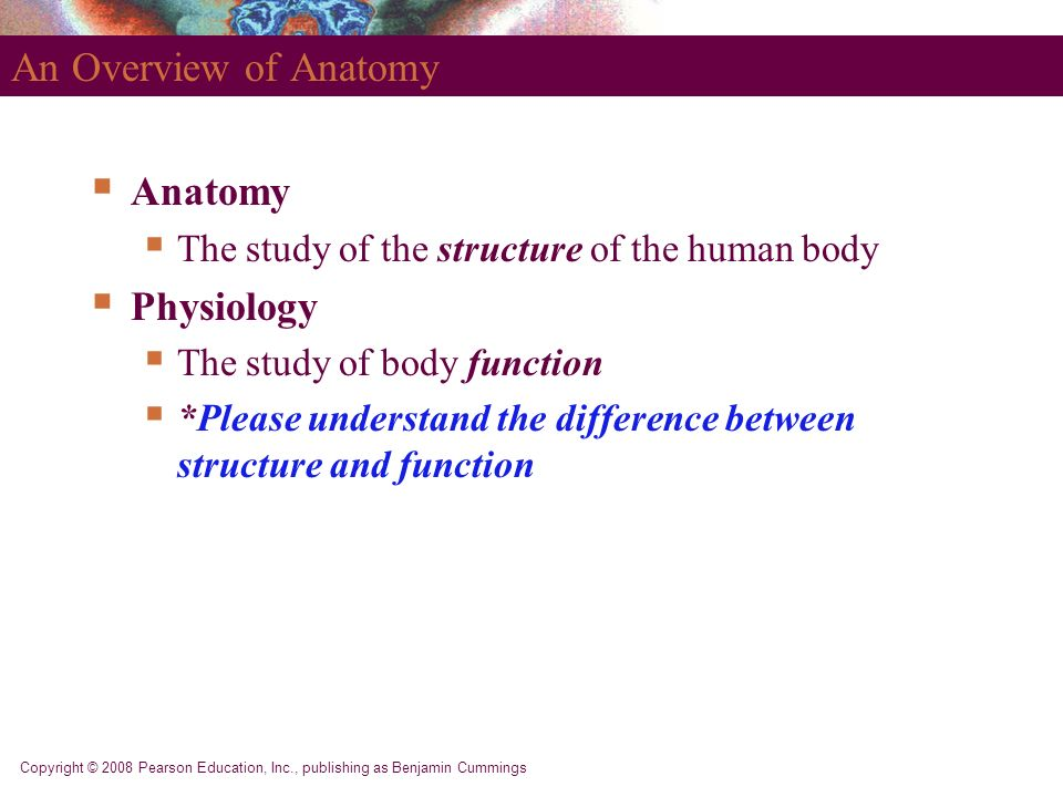 Niedlich Difference Between Anatomy And Physiology Bilder ...