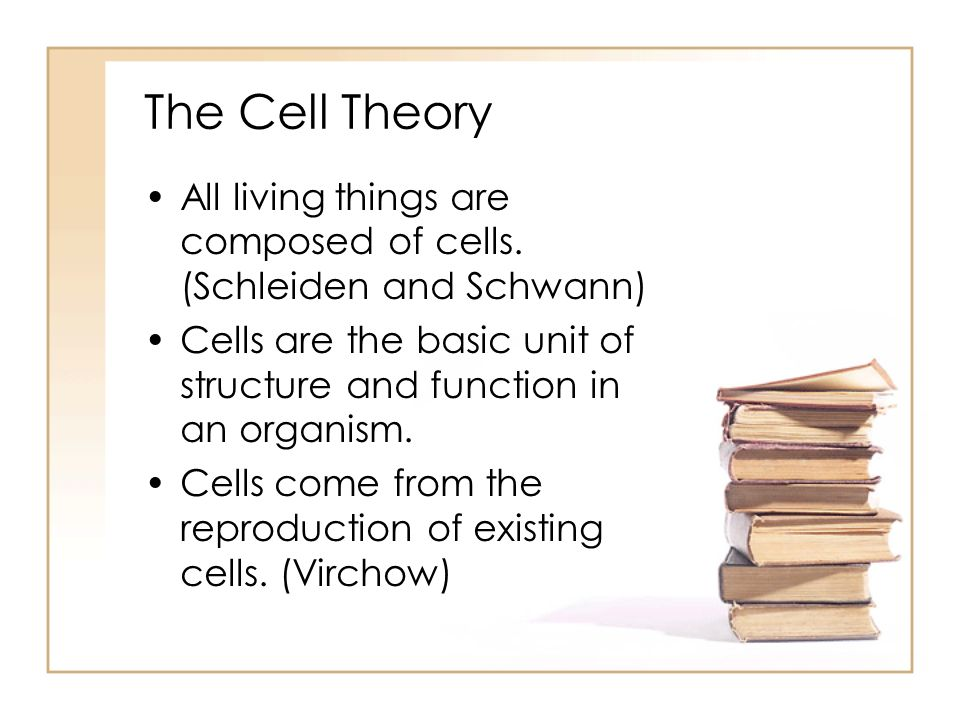 a description of a cell as the basic functional unit of an organism Cell biology a cell is chemical system that is able to maintain its structure  cells are the fundamental unit of life all  • cells are the functional units .