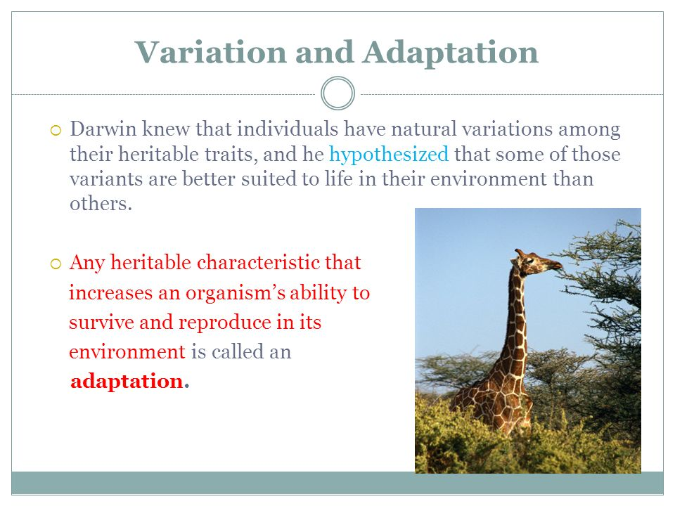 Variation and Adaptation