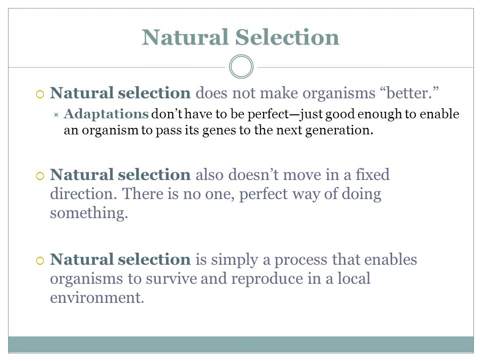 Natural Selection Natural selection does not make organisms better.