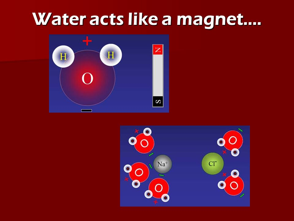 Water acts like a magnet….
