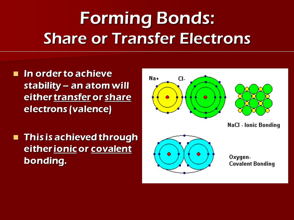 Forming Bonds: Share or Transfer Electrons