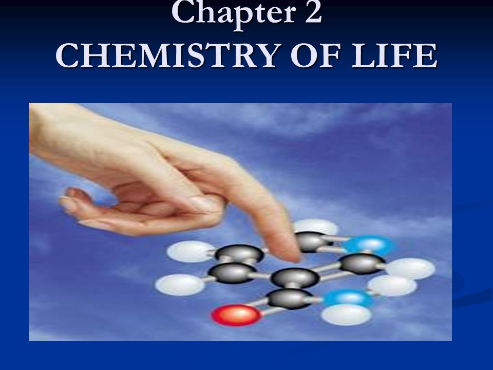 chemicals of life Showing top 8 worksheets in the category - chemistry of life some of the worksheets displayed are chapter 2 the chemistry of life worksheets, chapter 2 the chemistry of life, half life worksheet, chapter 24 the chemistry of life, chemistry of life review worksheet chapter 2 answer key, unit one, biology 1 worksheet i chemistry.