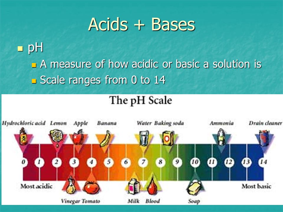Acids + Bases pH A measure of how acidic or basic a solution is