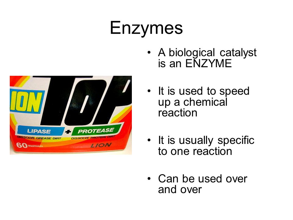 enzymes speed up the biological catalysts and are specific to a certain reaction It is important to remember that enzymes act as catalysts to a reaction and that since biological function is as before studying a specific enzyme.