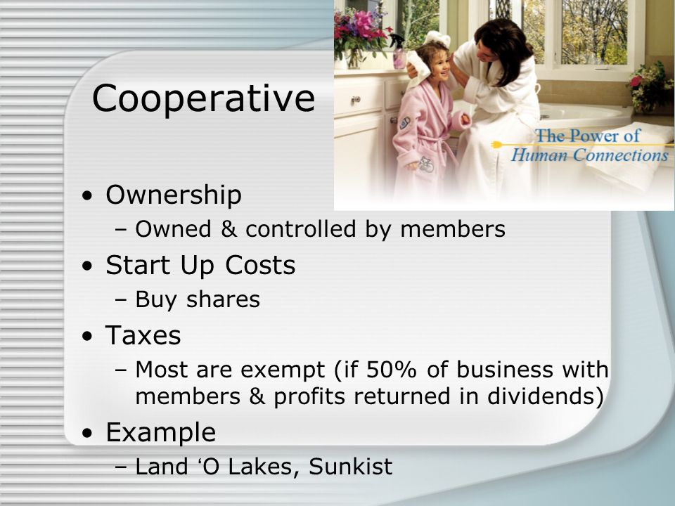 Cooperative Ownership Start Up Costs Taxes Example
