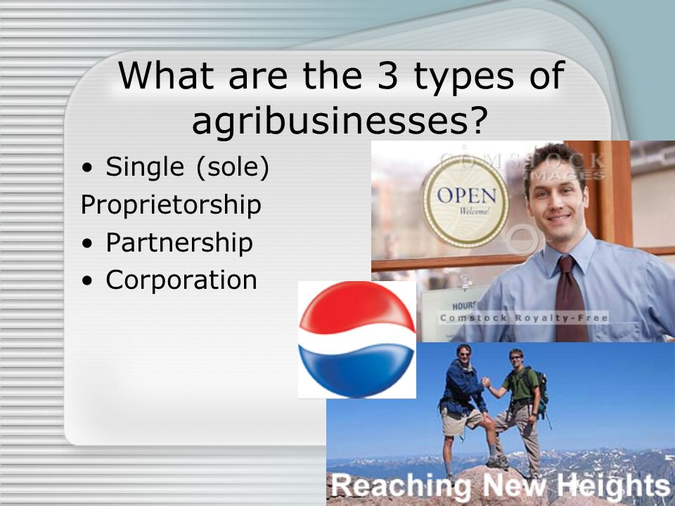 What are the 3 types of agribusinesses